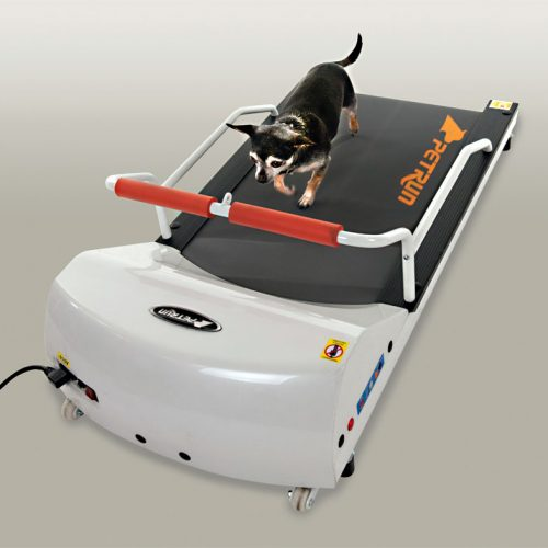 Home Exercise Equipment Usa: GoPet USA • Pet Exercise Equipment • Dog And Cat Treadmills